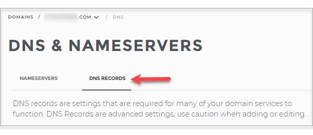 DNS Records Tab