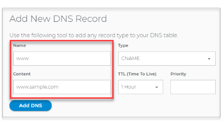 Type in the DNS record value