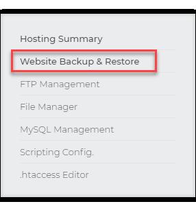 website backup