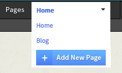 click on Blog to edit your store page