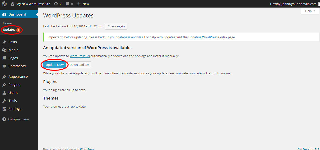 Update your WordPress Installation